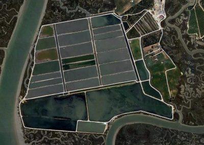 Proyecto de ampliación de bombeo en piscifactoría e informe ambiental del mismo en Marismas de San Miguel, Cartaya