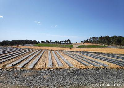 Proyecto de puesta en riego para el cultivo de berries para Freslucena S.C.A
